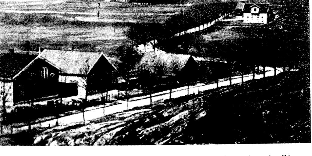 Dette bildet mangler alt-tekst; dets filnavn er NYPLANTET-ALLÉ-SETESDALSVEIEN-1870-1024x514.jpg
